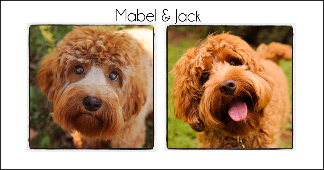 Mabel & Jack {2021}