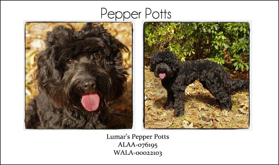 Pepper Potts