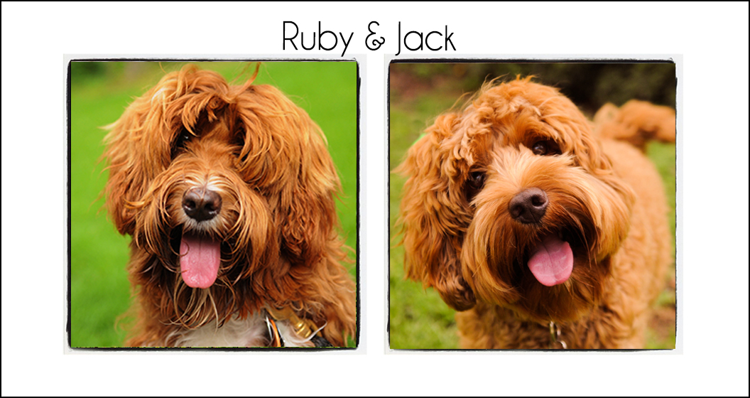 Ruby & Jack {2021}