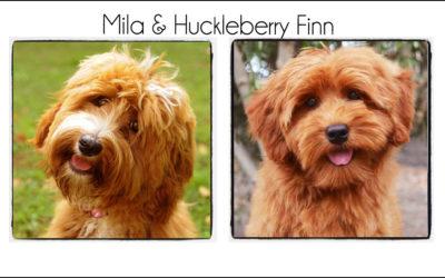 Mila & Finn {2021}