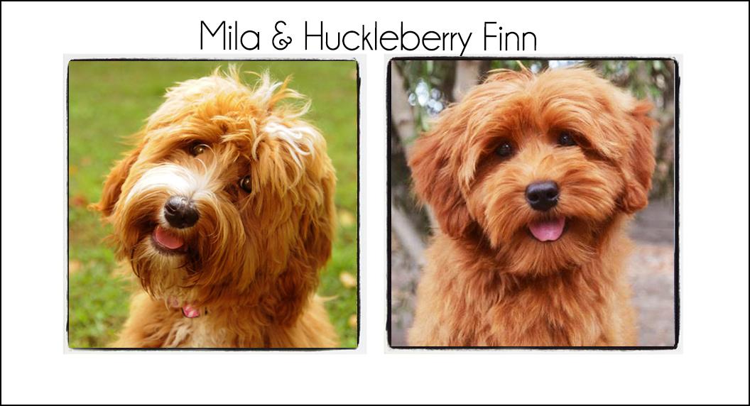 Mila & Finn {2021b}