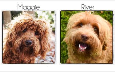 Maggie & River {2021}