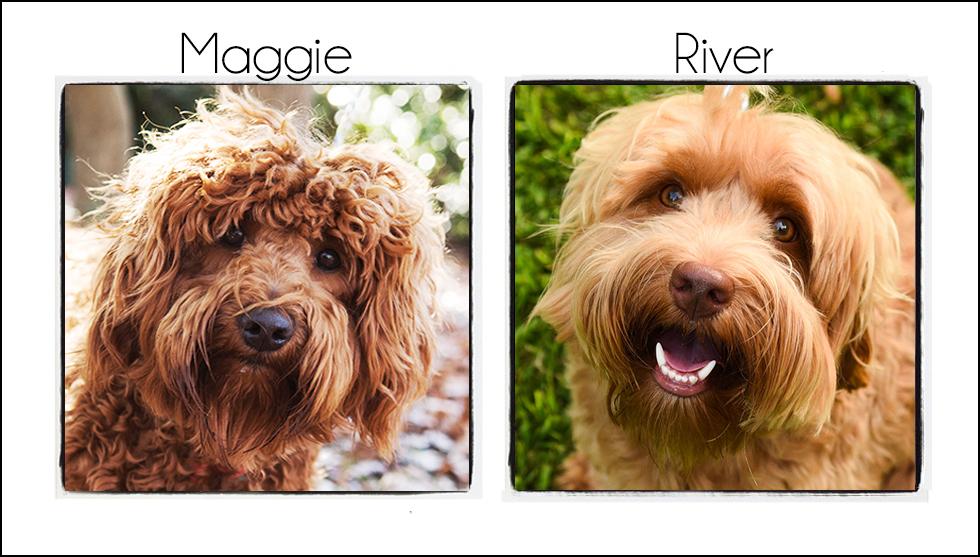 Maggie & River