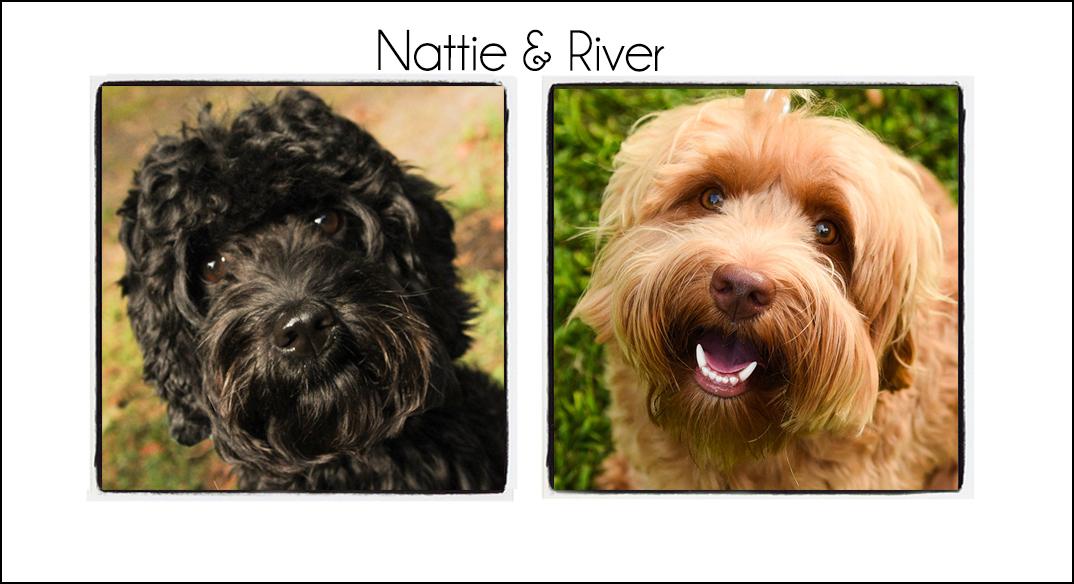 Nattie & River {2021}